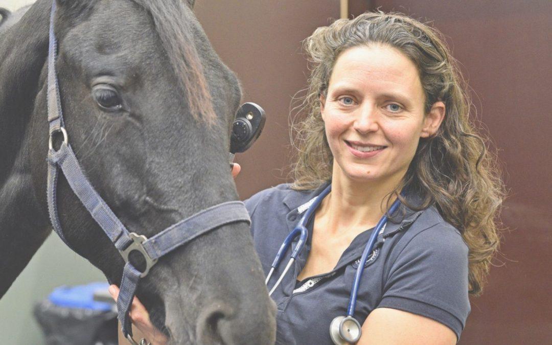 Paardendierenarts Iris van Gulik op instagram.