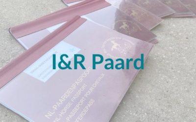I&R Paard: vraag en antwoord over de nieuwe registratie voor paarden
